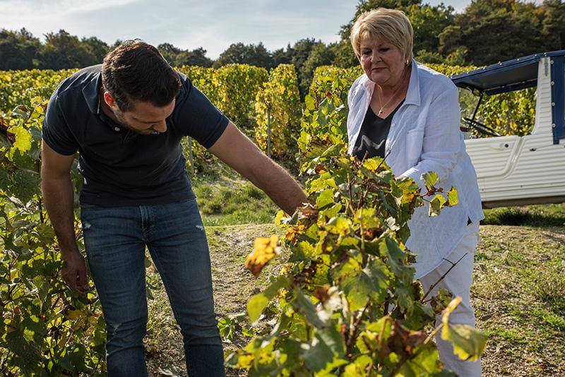 Michel et Nelly dans les vignes Champagne de la Renaissance